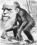 EL RETO DE LA BIOQUÍMICA AL PARADIGMA DARWINISTA
